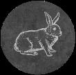 Comprar online Conejo