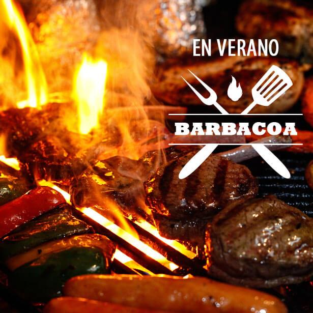 Comprar online Especial Barbacoas