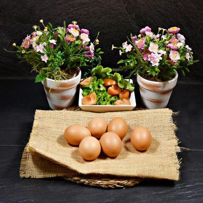 Compra online Huevos frescos libres de jaula